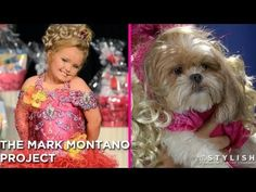 A Honey Boo Boo #Halloween costume: for a dog (!)