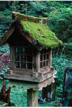 Moss roof  ~ Great pin! For Oahu architectural design visit http://ownerbuiltdesign.com