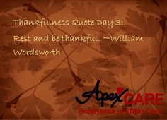 Thankfulness Quotes Thankful Quote  Spiritual & Scripture  Pinterest  Thankful .