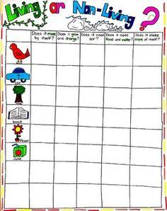 Living or Non-Living Anchor Chart Freebie - My best education list Ks2 Science, 1st Grade Science, Science Videos, Kindergarten Science, Teaching Science, Science Activities, Life Science, Science And Nature, Preschool