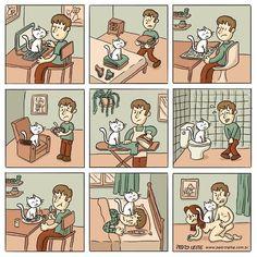 awwwwws kitties are so cute <3