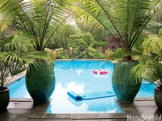 34 Swimming Pools You'll Want to Lounge In ASAP Vietnamese urns from East Hampton Gardens frame a view of the pool in designer Jill Morris's New Jersey house.<br> They're definitely Mermaid-approved. Tropical Backyard, Backyard Pool Landscaping, Landscaping Ideas, Hydrangea Landscaping, Florida Landscaping, Farmhouse Landscaping, Landscaping Plants, Potted Palms, Potted Trees