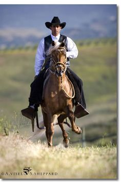 The Peruvian Paso- The Cadillac of the Horse....the smoothest riding horse on earth!