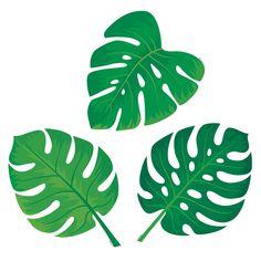 Palm Pardse Monstera Leaves Cutouts