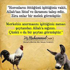 İnstagram @engelli_issiz_adam Serif, Muhammed Sav, Good Sentences, Positive Psychology, Hadith, Religious Art, Good Advice, Cool Words, Allah