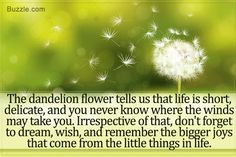 What Does a Dandelion Tattoo Symbolize?