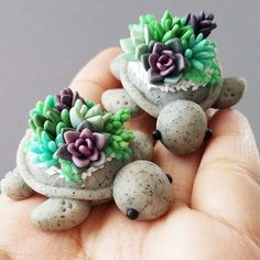 Hello loves We have two turtles with the same color scheme. We love how the dark succulents contrast well with the brighter succulents. We had to make at least two of them! We have more turtles coming up soon. Planning our first 2017 restock! Super excited for next year because we have lots of plans for our shop! Can't wait to show everyone!