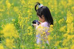 Little+photographer+in+rape+blossoms+field