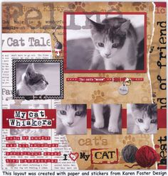cat scrapbook page - 5 pictures