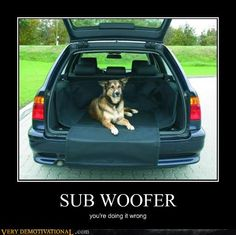SUB WOOFER - Demotivational Poster
