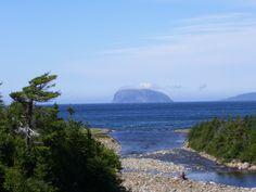 Weeball - Bay of Islands