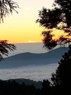 Ali Mountain (Alishan), Chiayi County: Veja 517 avaliações, dicas e 936 fotos de Ali Mountain (Alishan), classificação de Nº 1 no TripAdvisor entre 125 atrações em Chiayi County.