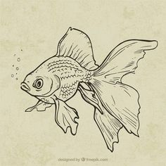 Discover thousands of copyright-free vectors. Graphic resources for personal and commercial use. Thousands of new files uploaded daily. Fish Drawings, Pencil Art Drawings, Art Drawings Sketches, Art Sketches, Tattoo Sketches, Koi Fish Drawing, Sea Drawing, Skeleton Drawings, Koi Art