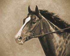 Thoroughbred race horse painting in sepia by Crista Forest
