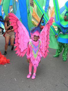 Pink Hummingbird - Carnival Costumes