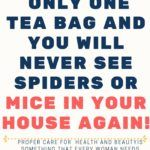 A huge number of individuals around the globe are having issues with insect and mice invasions in th Swollen Belly, Sassy Water, Brown Spots On Face, Antibacterial Soap, Vicks Vaporub, Peppermint Tea, Before Sleep, Cancer Support, Keep Trying