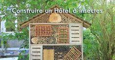 """Résultat de recherche d'images pour """"hotel à insectes"""""""