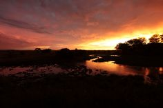 Sunset in Madikwe - Madikwe, North-West by Sebastien Roume