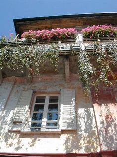 Puo sembrare la Provenza ma in realtà è Orta San Giulio sul lago D'Orta (Piemonte)