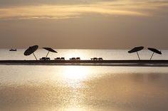 Fin de tarde especial a orillas de Mar Rojo en Club Med El Gouna Mer Rouge - Egipto