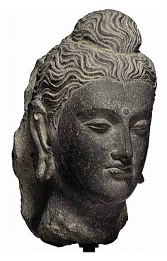 A gray schist head of Buddha   Gandhara, 2nd/3rd Century   The face with full lips, aquiline nose, and almond-shaped eyes, centered by a raised urna and flanked by long pendant earlobes with piercings, the finely carved locks of hair pulled over the ushnisha  9 in. (22.9 cm.) high