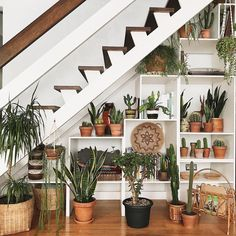 inspiration unique ideas for indoor garden under stairs 29 Home Design, Interior Design, Retro Home Decor, Diy Home Decor, Home Decoration, Living Room Designs, Living Room Decor, Space Under Stairs, Living Room Under Stairs