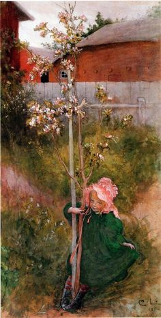 Carl Larsson - Apple Blossom Catalog. Repinned by www.mygrowingtraditions.com
