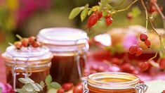 The first step is to use medicinal plants, which have a pronounced analgesic and anti-inflammatory effect Elderberry Flower, Old Recipes, Eat Smarter, Medicinal Plants, Healthy Drinks, Chocolate Fondue, Candle Jars, Panna Cotta, Healthy Lifestyle
