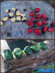 """Hand painted bees, ladybirds and frogs from Rachel ("""",)"""