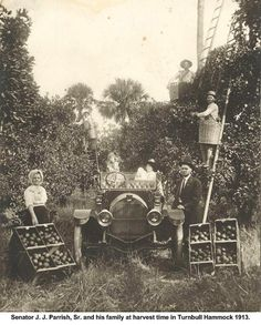 Harvest time at Parrish Groves in Titusville, Florida circa 1913.   #visitspacecoast