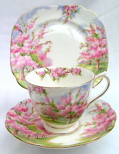 "Royal Albert ""Blossom Time"" I have a set of this for my girls. I can imagine sitting around with our favorite tea set, drinking tea, and talking about their boyfriends. :o) by simone Royal Albert, China Cups And Saucers, Teapots And Cups, Antique Dishes, China Tea Sets, Tea Art, Tea Service, My Cup Of Tea, Tea Cup Saucer"