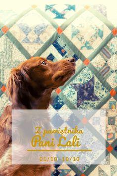 Z pamiętnika Pani Lali (3) - elazeman.pl Movie Posters, Diy, Animals, Scrappy Quilts, Historia, Animales, Bricolage, Animaux, Film Poster