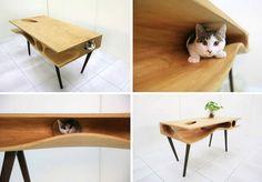 Mesa - juego para gato