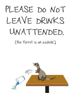 As much as I love ferrets, this couldn't be more true <~~ my ferret just proved this true and with grape juice...