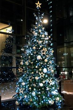 Cheesegrater 20ft Christmas Tree and LED Lights | Christmas ...