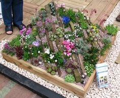 A crevice garden - Harrogate 2007 / The Stone Gardener / on TTL Design