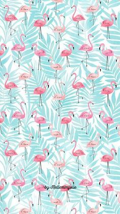 E ai? Que esta tbm nessa vaibe flamingo? Flamingo Wallpaper, Summer Wallpaper, Trendy Wallpaper, Pretty Wallpapers, Screen Wallpaper, Cool Wallpaper, Iphone Wallpapers, Pattern Wallpaper, Bedroom Wallpaper