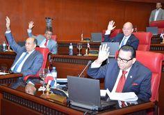El Senado esperará cualquier acción oficial que se emprenda en contra de algún miembro del pleno para fijar posición en caso de que se inv...