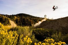 best downhill mountain bike, mtb, picture of the day, bike rider jumping