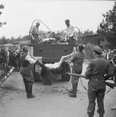 British troops force SS camp guards to load the corpses of prisoners onto trucks for burial during the liberation of the Bergen-Belsen concentration camp in April Sergeant Midgley, British Army/Imperial War Museum via Wikimedia Commons Holocaust Memorial, Germany Ww2, British Soldier, British Army, History Online, Anne Frank, Life Pictures, Historical Pictures
