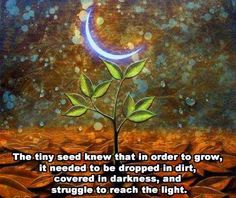 In order to grow . . .