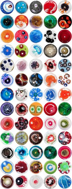 You may think that these were small pieces of art...nope just bacteria in petri dishes.