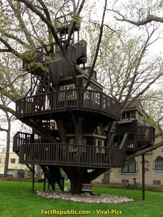 Complex Treehouse in St. Louis Park. Click on image for info on this treehouse.