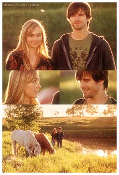 Ty: So, what's gonna happen now? Amy: Well, I guess as long as we don't separate them, they'll be fine. (Ty smiles and Amy looks at him) I was talking about the horses. Ty: Yeah, me too.  Heartland - 2x04 - Dancing in the Dark