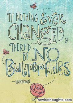 no changes? no butterflies