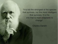 Don't let change defeat you! Change is needed in life. Be positive of the situation.
