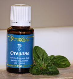 Se trata de una planta utilizada hace cientos de años en la gastronomía, aunque inicialmente algunos afirman que su único uso era el d...