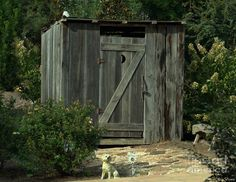The Double Seat Outhouse Photograph  - The Double Seat Outhouse Fine Art Print