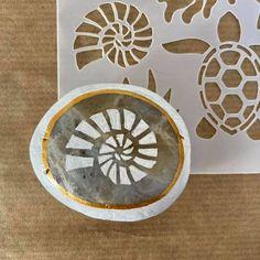 Nautilus Shell, Shells, Cape Town, Rocks, Home Decor, Conch Shells, Decoration Home, Room Decor, Seashells