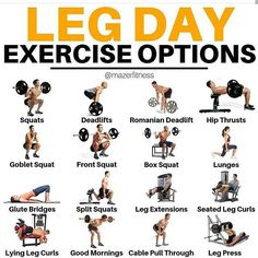 This is a step-by-step guide on the leg curl exercise. Learn all the benefits and leg curl alternative exercises with this in-depth post. Leg Workouts For Men, Gym Workout Tips, Weight Training Workouts, Butt Workout, No Equipment Workout, Glutes Workout Men, Leg Training, Leg Workout Routines, Leg Exercises With Weights